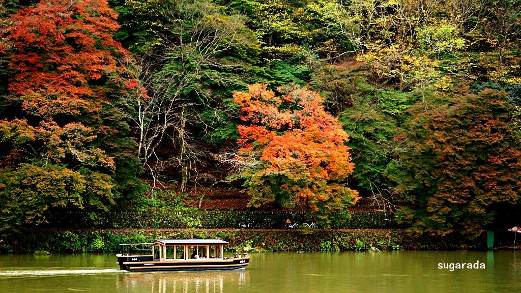 日本 京都:染紅嵐山